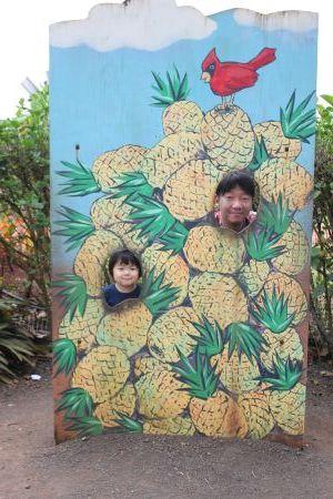 パイナップル・エクスプレス(Pineapple Express)